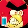 بازی پرندگان خشمگین دیوانه آنلاین